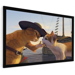 "110"" Fixed Frame Projector Screen 16:9"